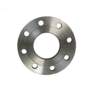 PN16 101 (16 3) Slip On Plate Flanges